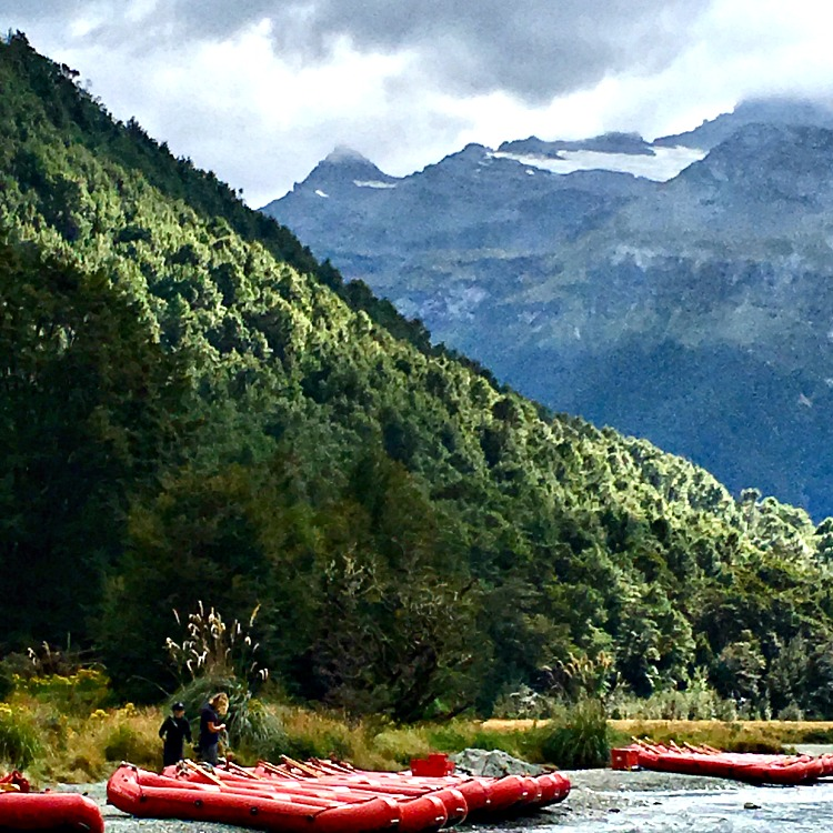 are there things to do on the Dart River in New Zealand