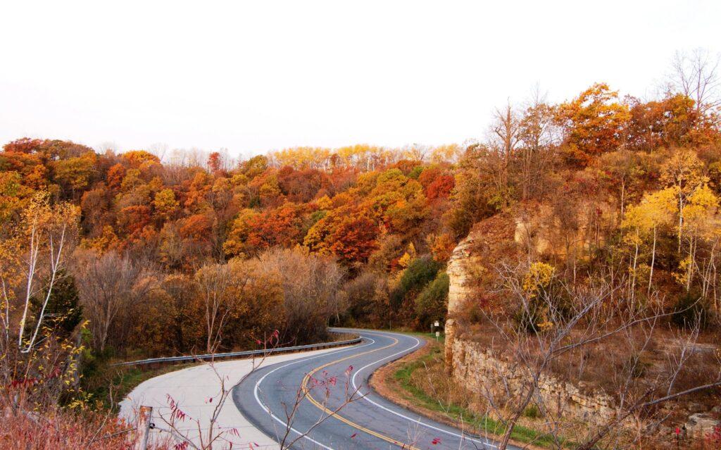 Autumn leaves along a road in La Crosse, Wisconsin.