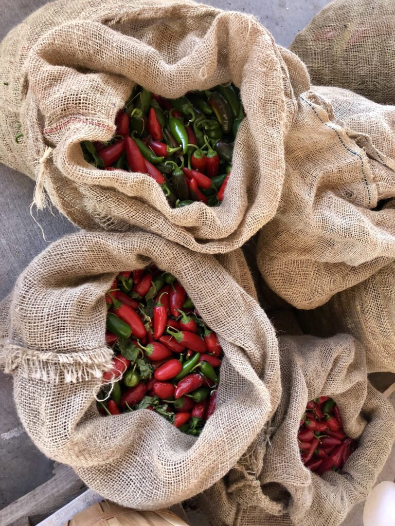 Bags of freshly harvested chiles in Hatch.