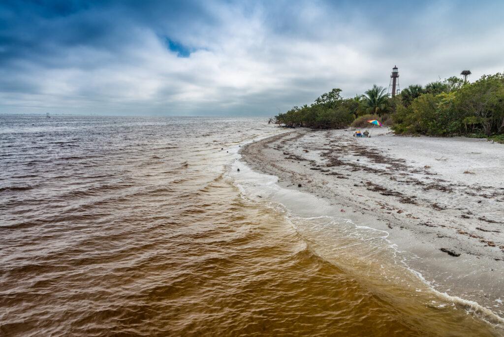 Beach, Captiva Island, Florida.