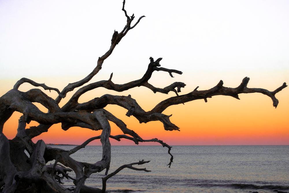 Beach sunset on Jekyll Island.
