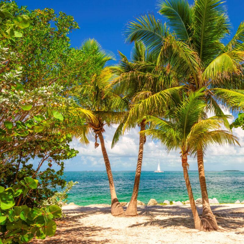 Beach views in the Florida Keys.