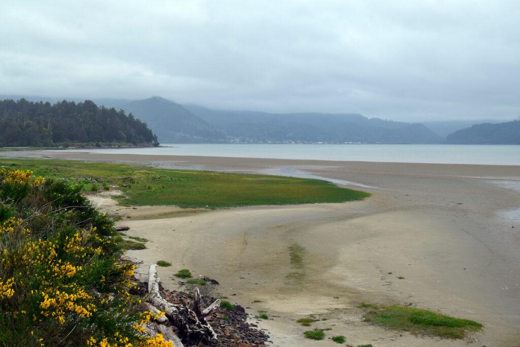 Beach views on the Bayocean Peninsula.