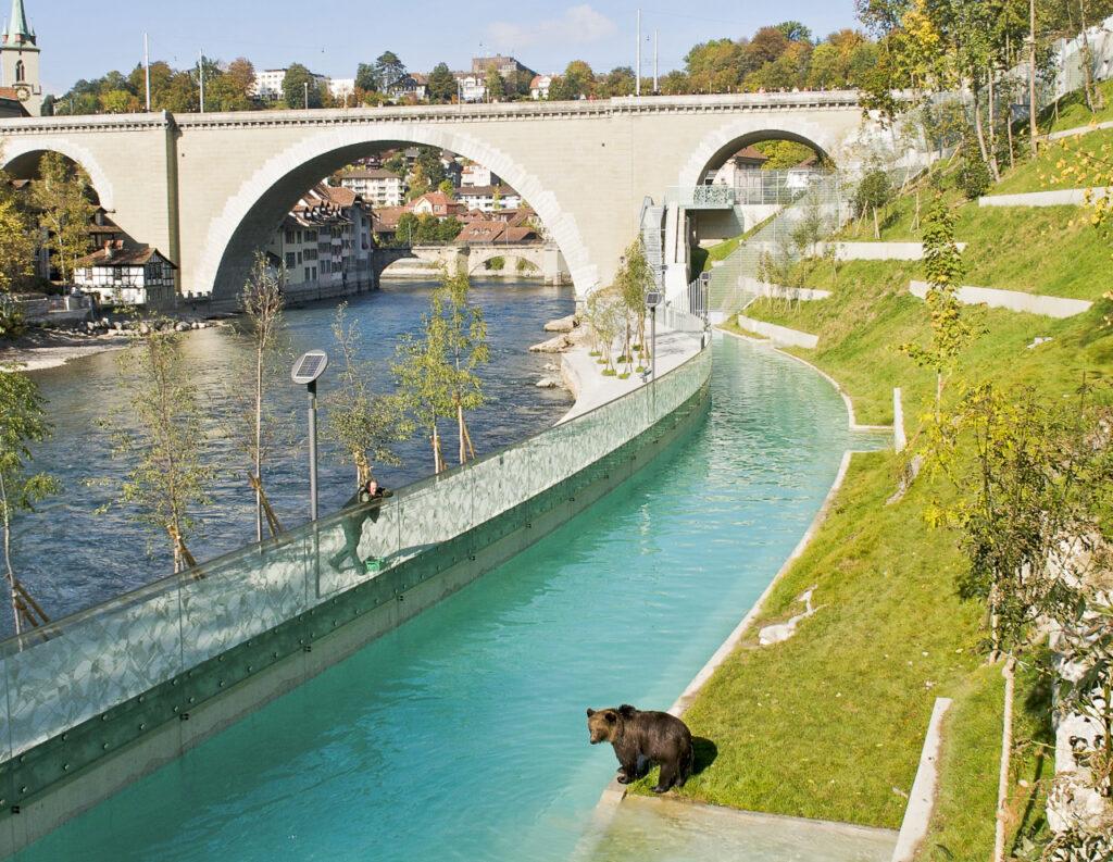 Bear Park in Bern.