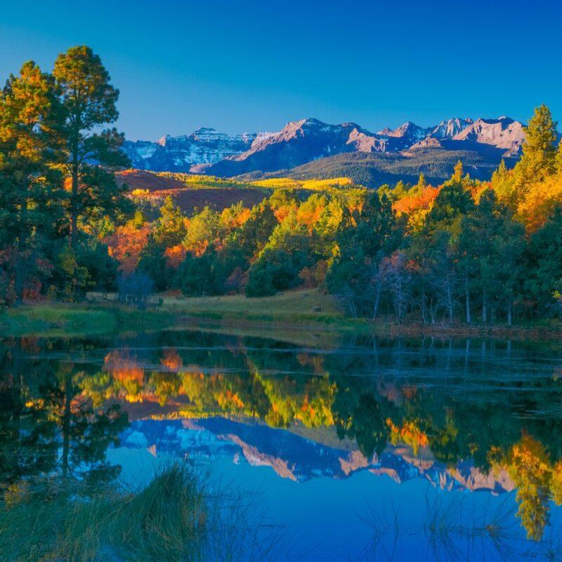 Beautiful fall foliage in secluded Ridgway, Colorado.