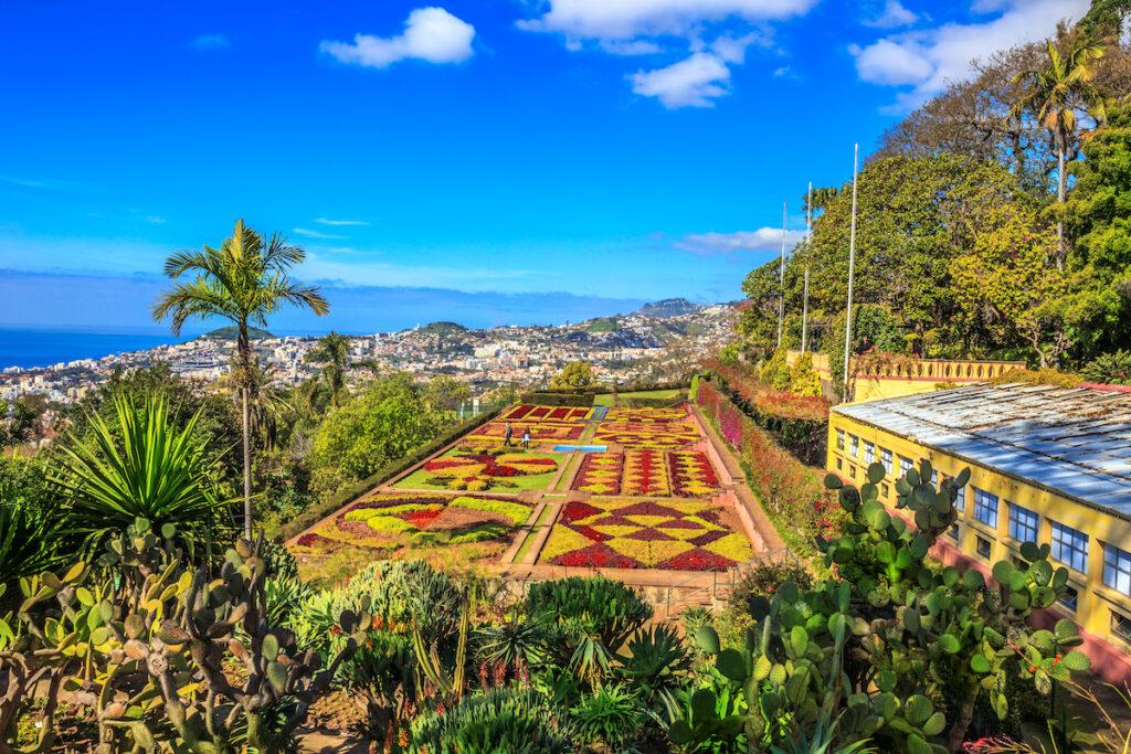 Beautiful gardens in Funchal, Madeira, Portugal.