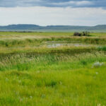 Beautiful landscape in Canada's Grasslands National Park.