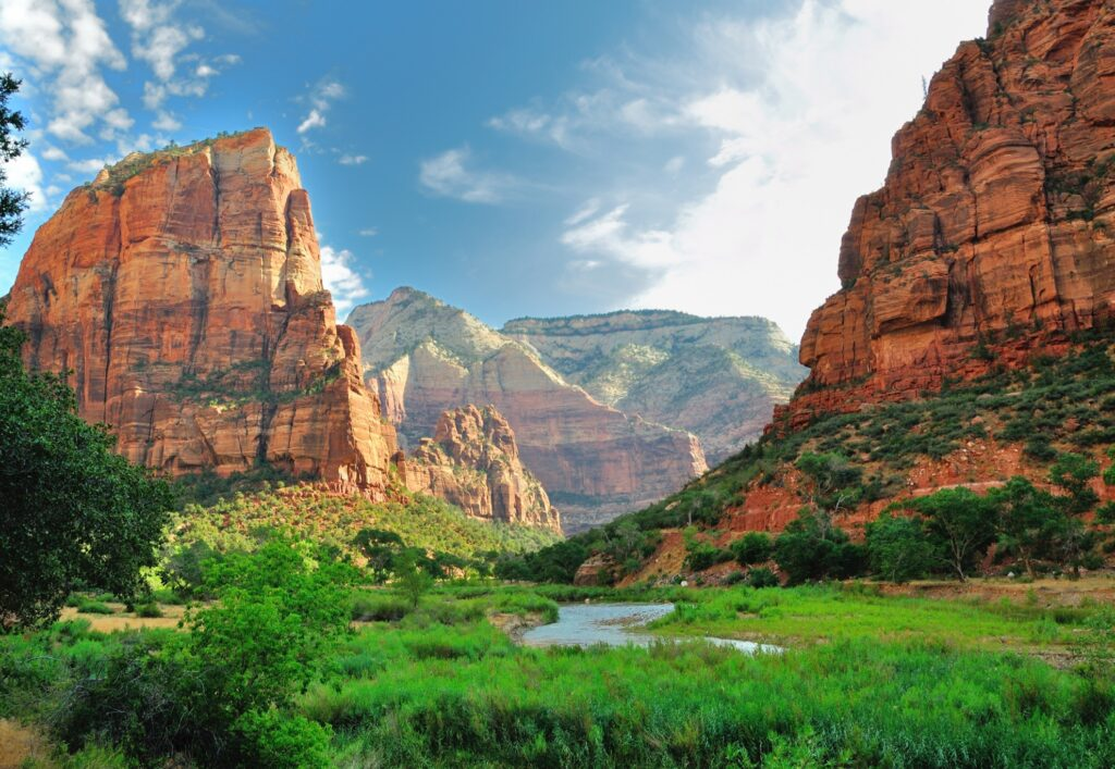 Beautiful landscape in Zion National Park.