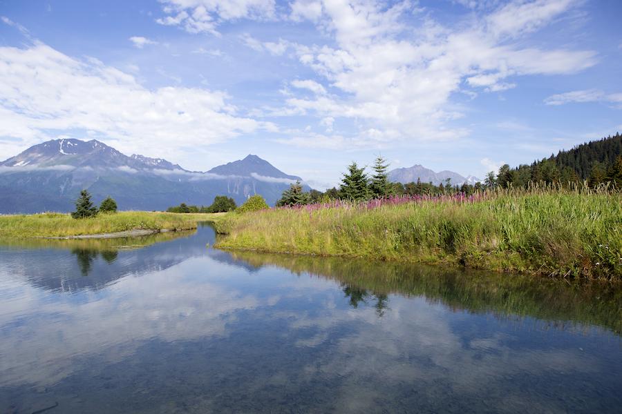 Beautiful views at Alaska's Kenai Peninsula.
