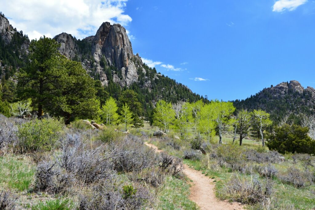 Beautiful views from a hiking trail in Estes Park.