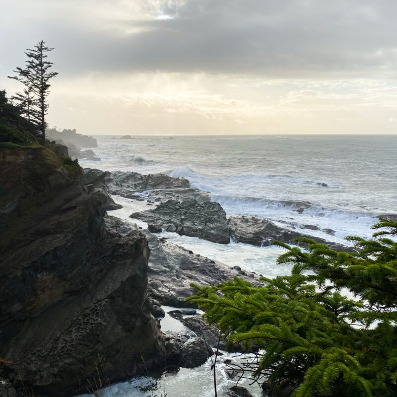 Beautiful views of the Oregon coast.