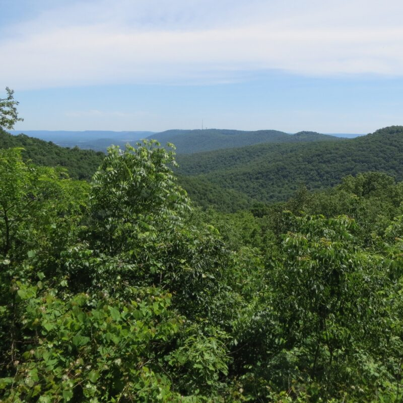 Beautiful wilderness views near Huntsville, Alabama.