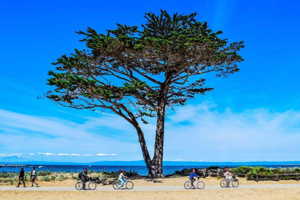 Bikers on the Monterey Bay Coastal Recreation Trail.