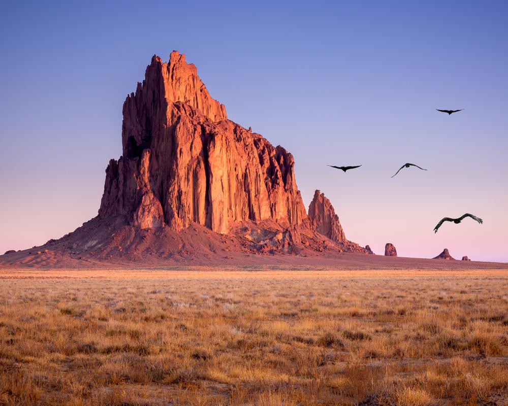 Birds flying at Shiprock.