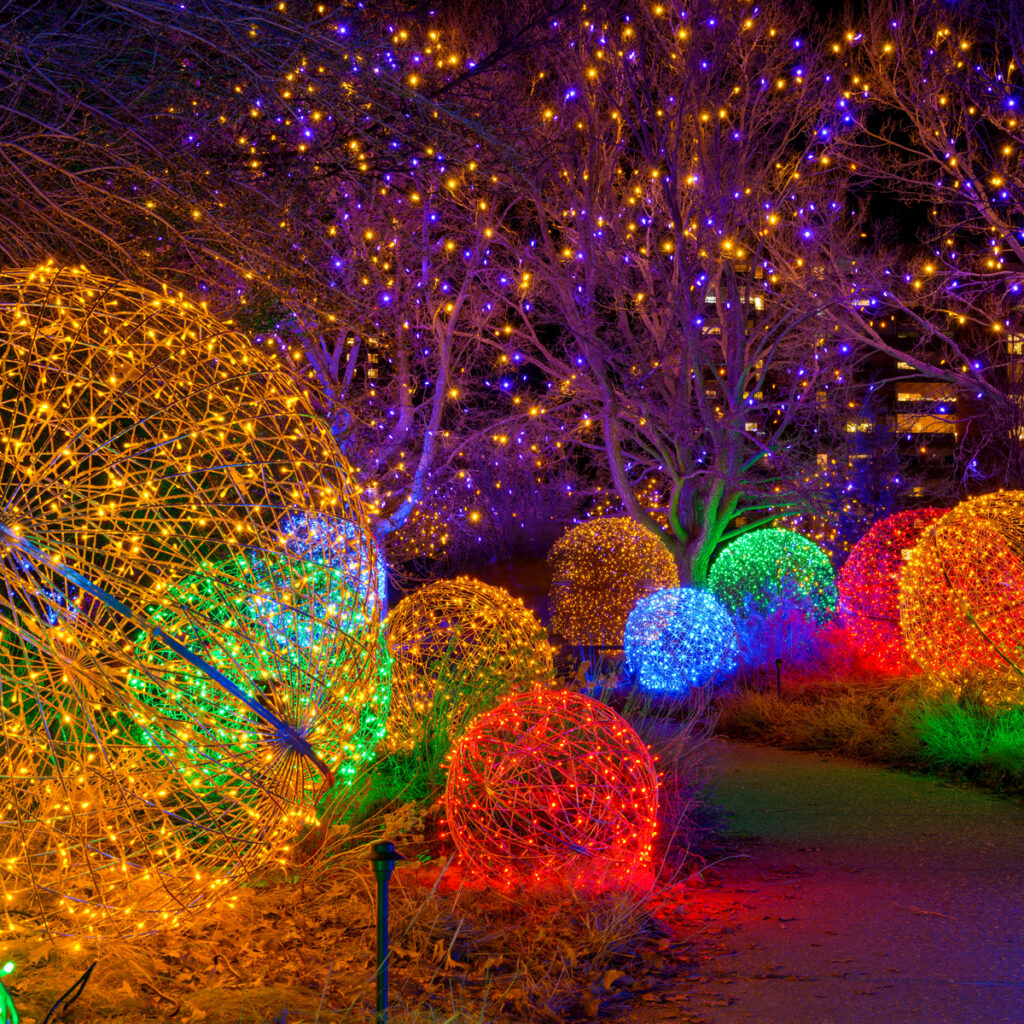 Blossoms of Light at the Denver Botanic Gardens.
