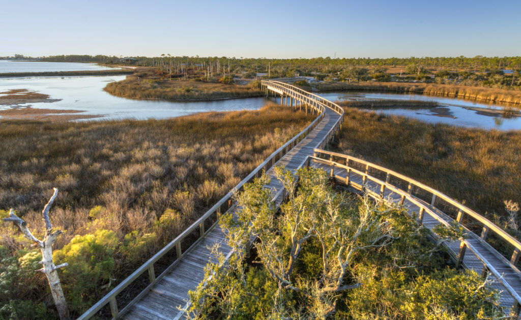Boardwalk trails at at Big Lagoon State Park in Florida.