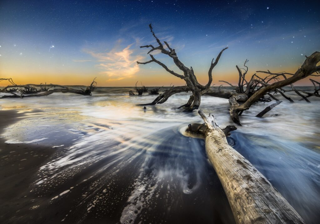 Boneyard Beach in Big Talbot Island State Park.