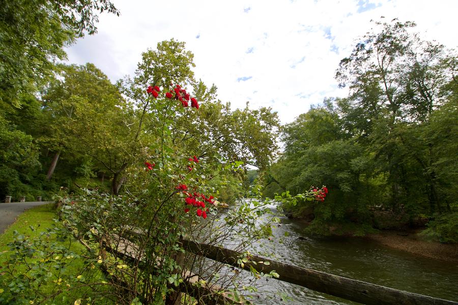 Brandywine Creek State Park in Wilmington, Delaware.