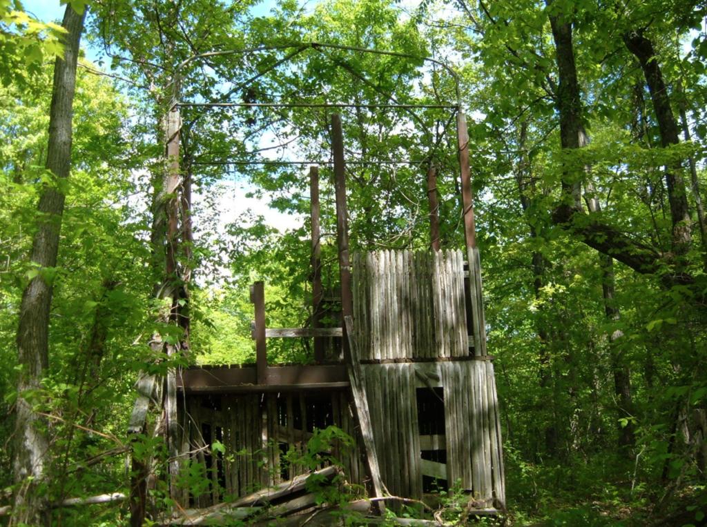 Broken down buildings in the Jungle Habitat.