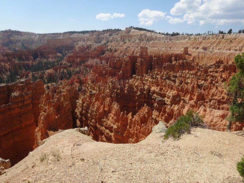 Bryce Canyon during the summer time.