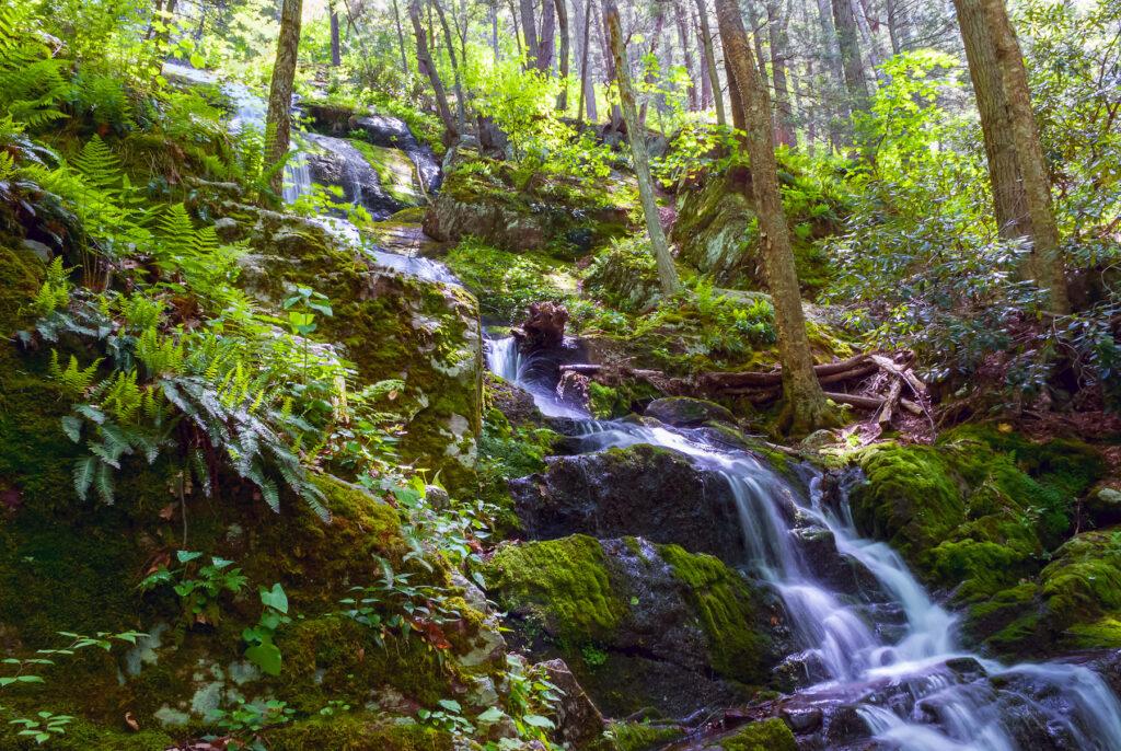 Buttermilk Falls in New Jersey.