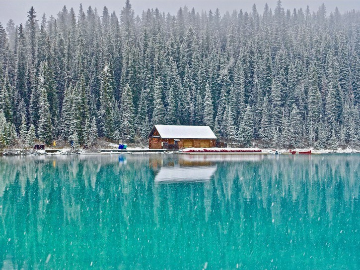 Cabin backed by lines of trees in winter, on the shore of green Lake Louise