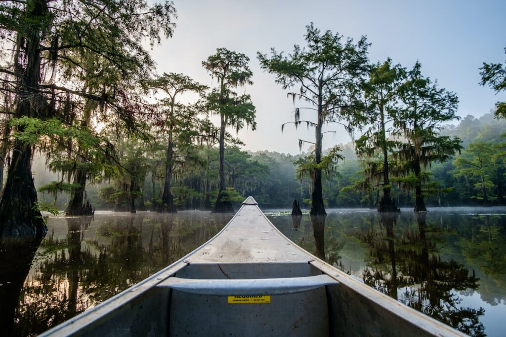 Caddo Lake State Park in Texas.