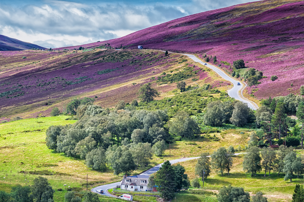 Cairngorms National Park in Scotland.