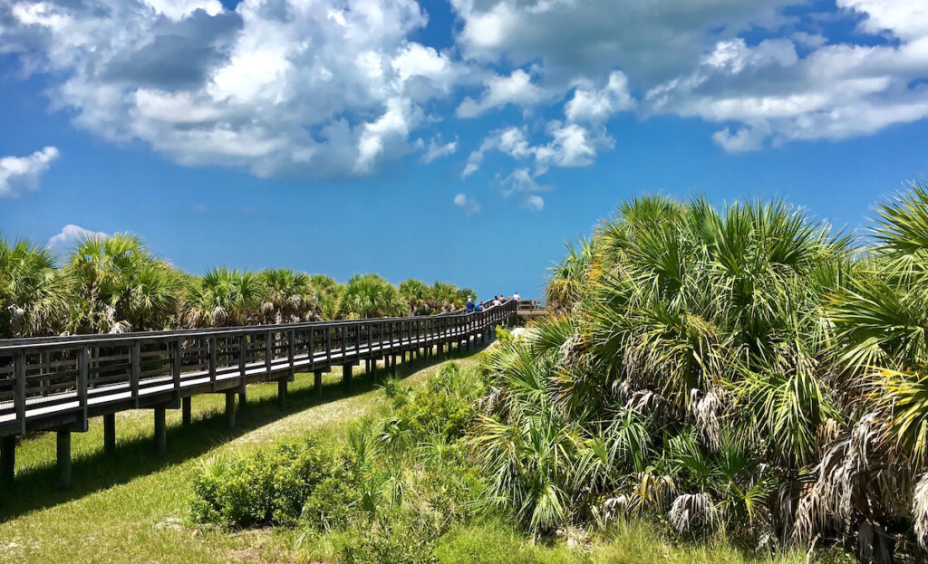 Caladesi Island State Park in Florida.