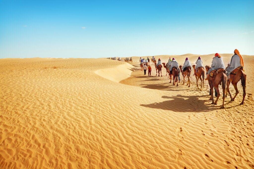 Camelback tour through the Sahara Desert.
