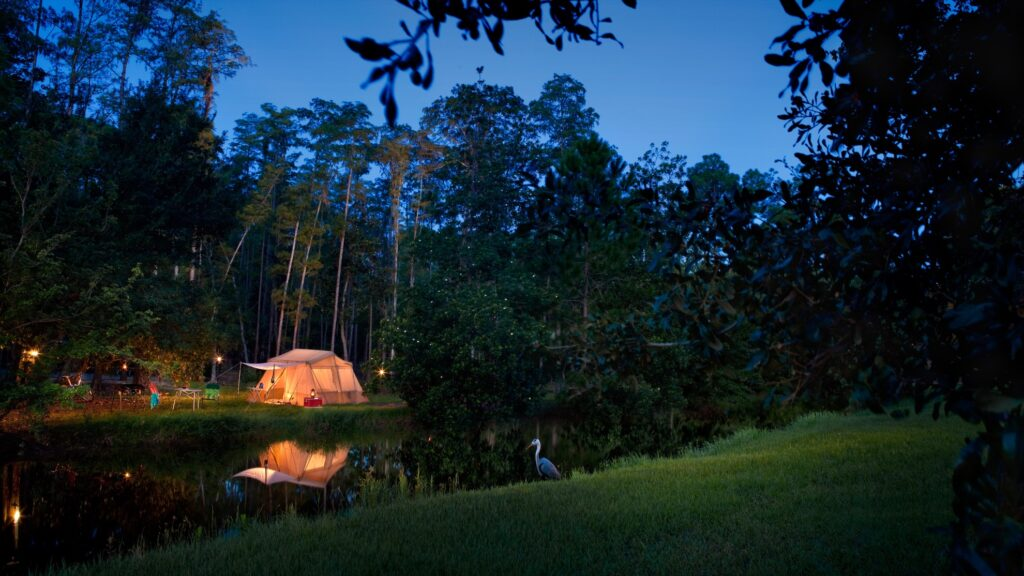 Camping at Disney's Fort Wilderness.