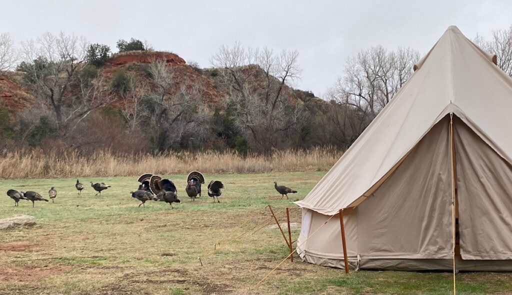 Camping at Palo Duro Canyon in Texas.
