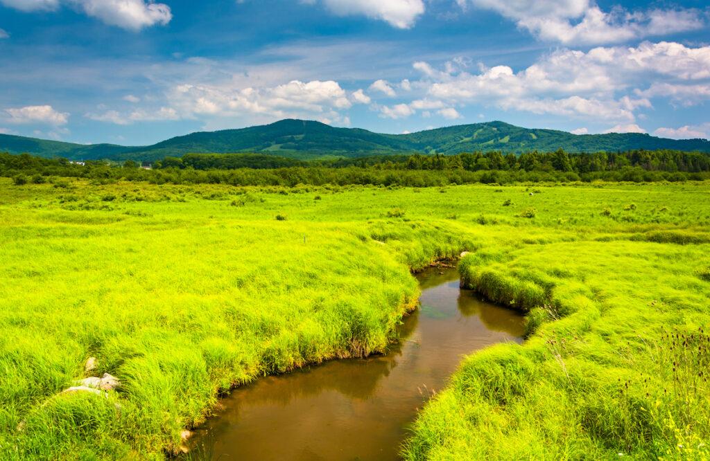 Canaan Valley Resort State Park in West Virginia.
