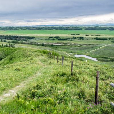 Canadian ranch views in Cochrane, Alberta.