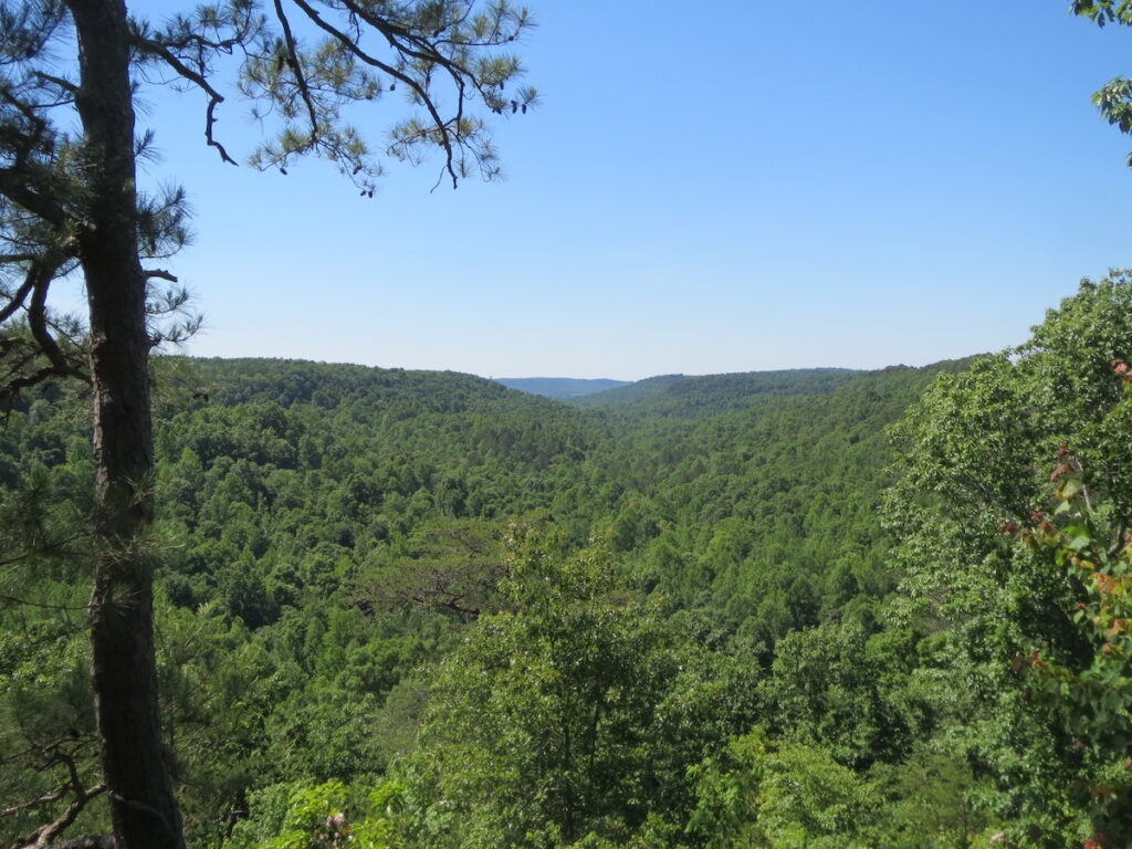 Cane Creek Canyon Preserve in Alabama.