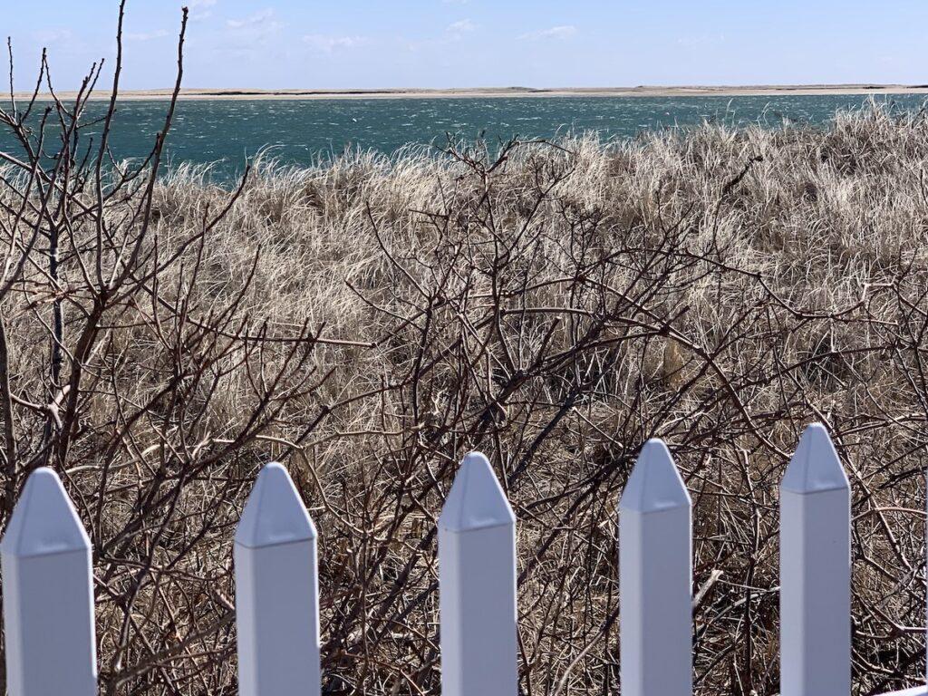 Cape Cod Seashore.