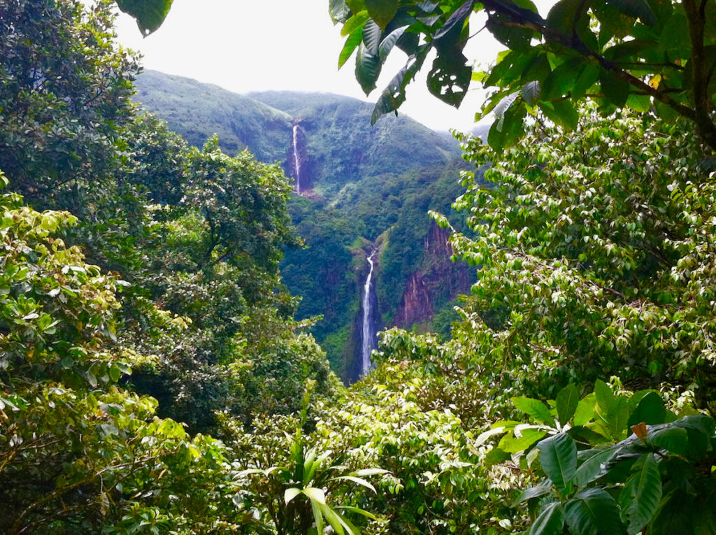 Carbet Falls on a Guadeloupe island in the Caribbean.