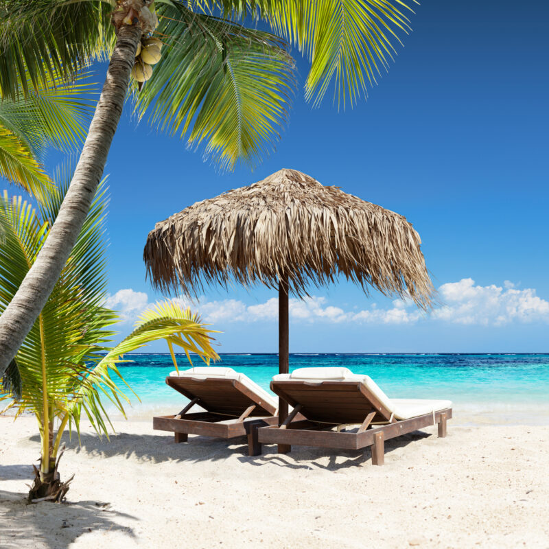 Chairs and an umbrella under palm trees on a tropical beach.