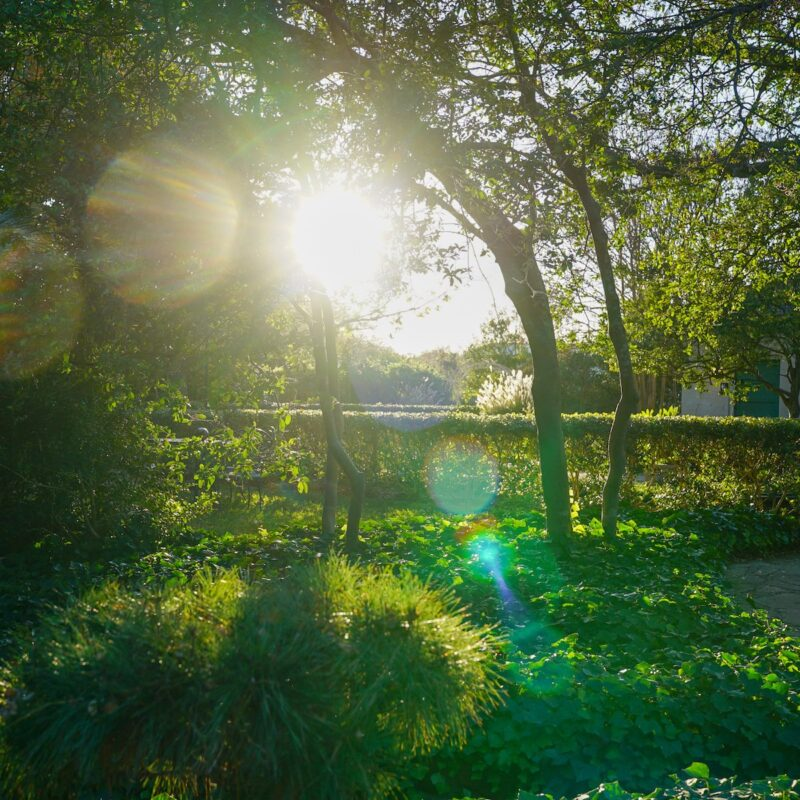 Chandor Gardens in Weatherford, Texas.