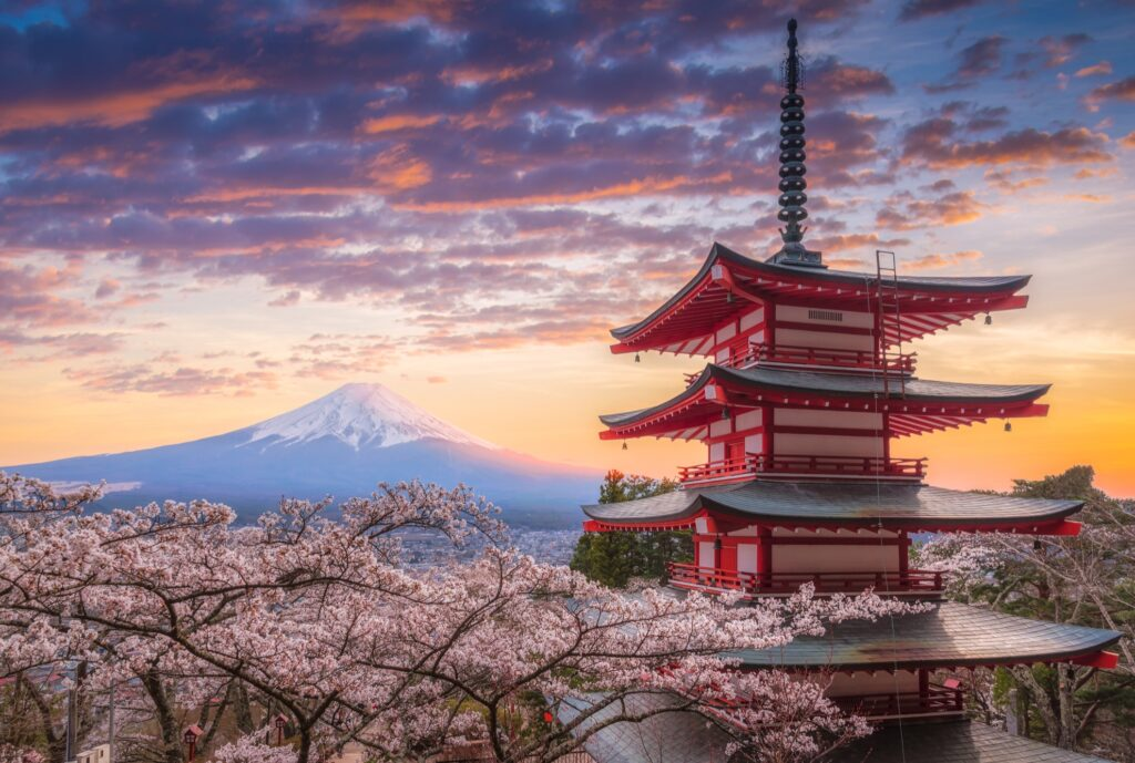 Cherry blossoms and Mount Fuji.