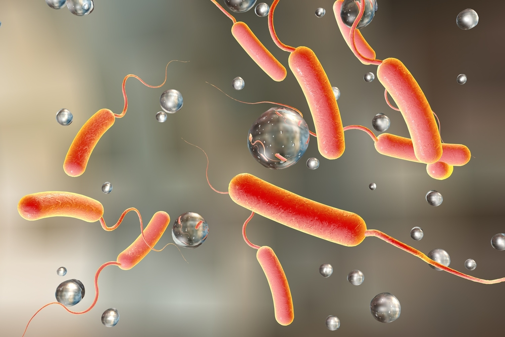 Cholera bactria