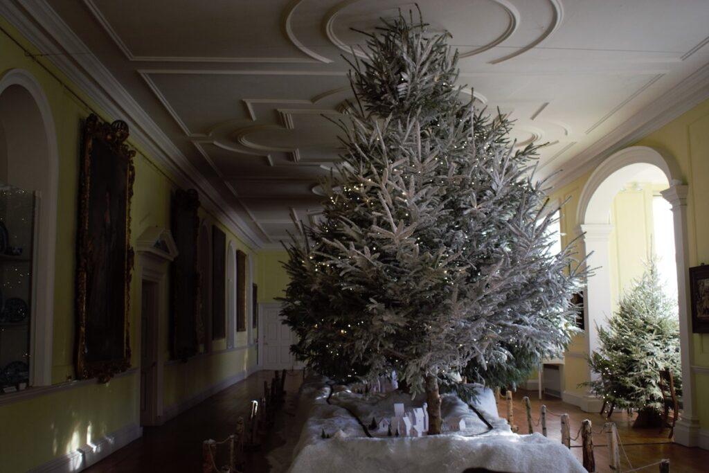 Christmas trees in Doddington Hall.