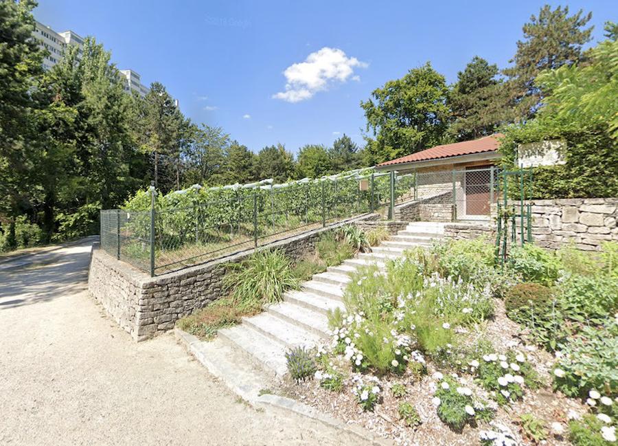 Clos Des Morillons at Parc Georges-Brassens.