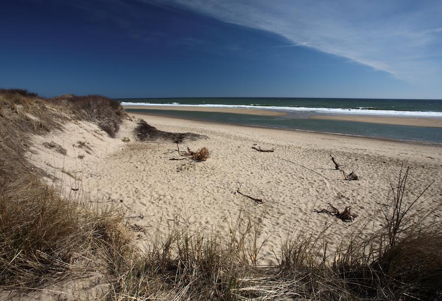 Coast Guard Beach in Cape Cod.