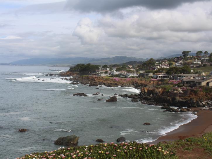 Coastal views of Cambria, California.
