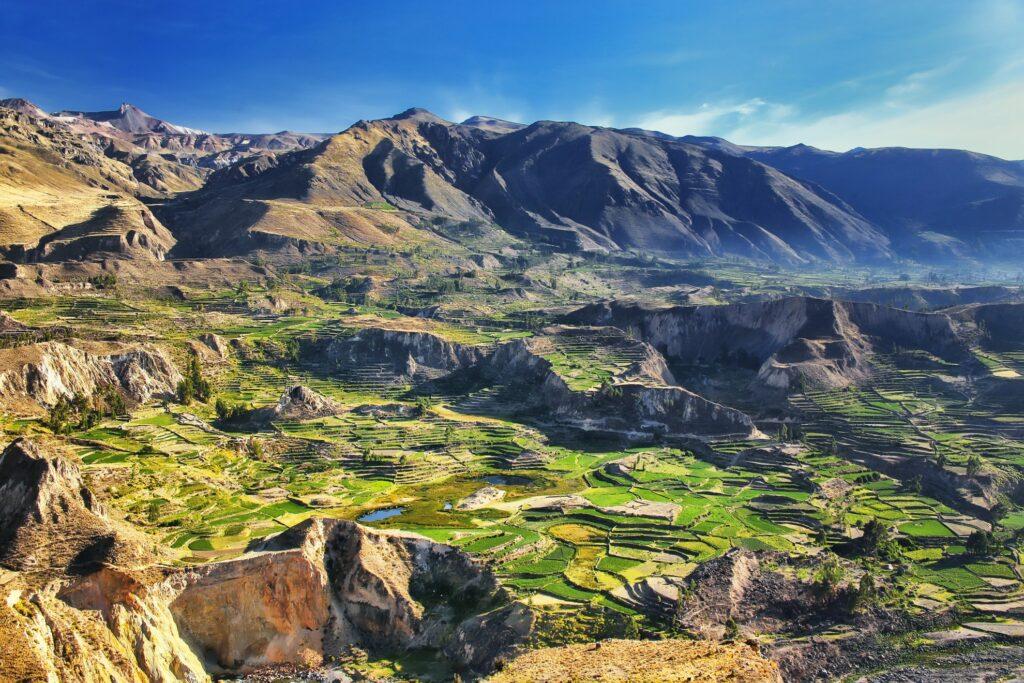 Colca Canyon in Peru.