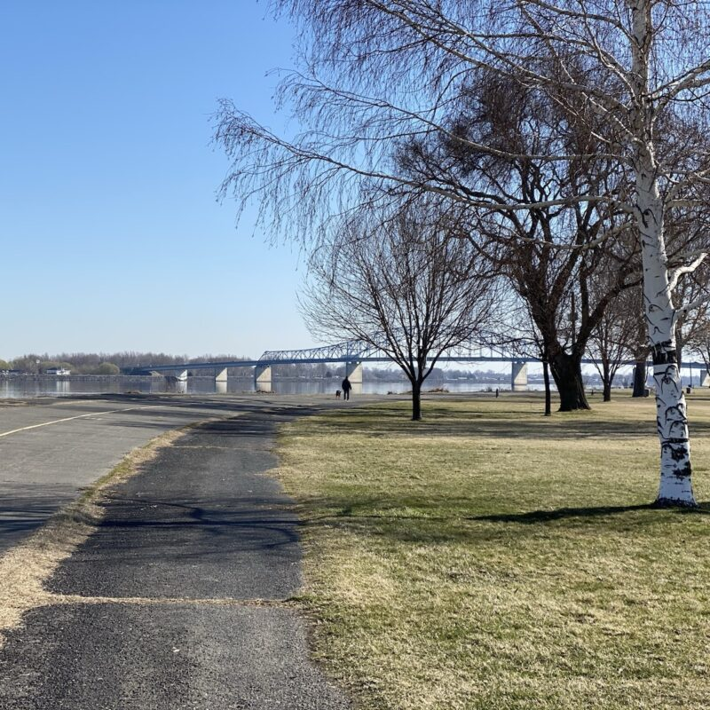 Columbia River from Columbia Park, Kennewick.