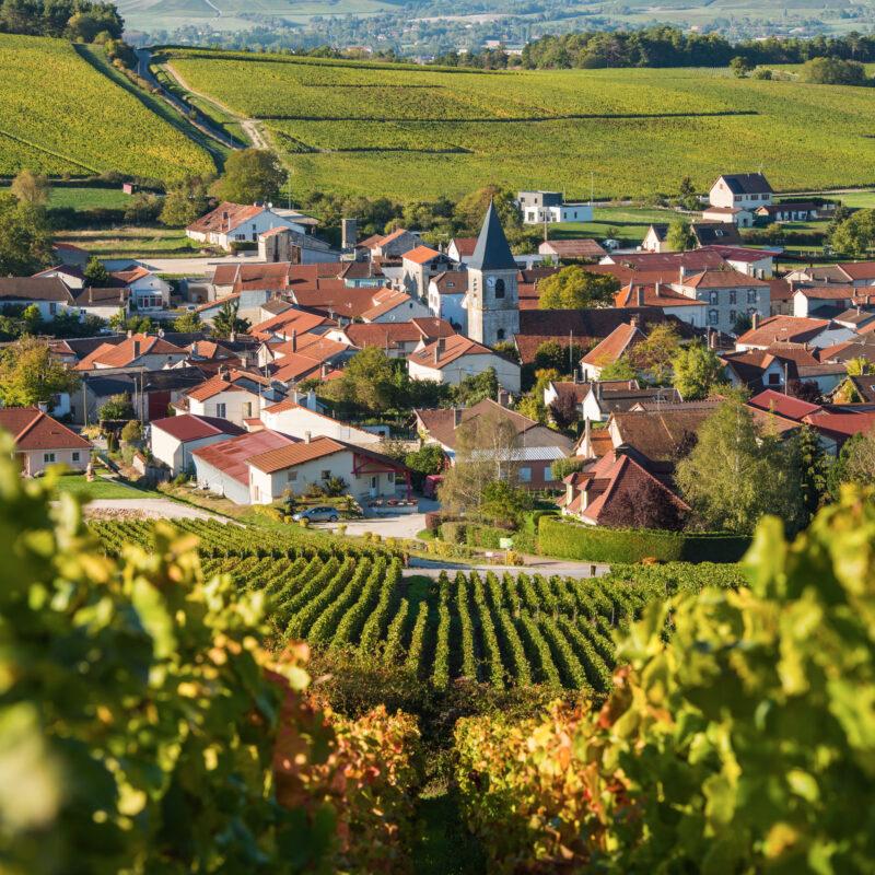 Cote des Bar, on the border of the Champagne wine region near Bordeaux.