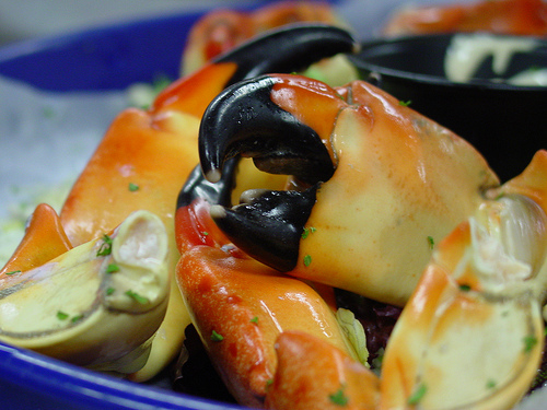 Crab claws on a plate