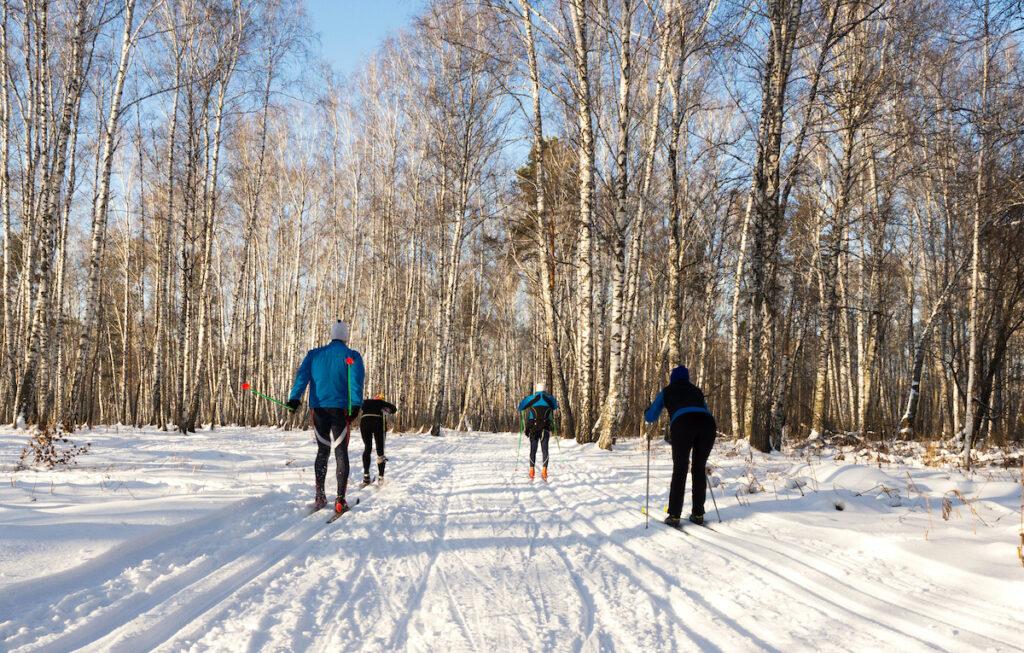 Cross-country skiers enjoying the snow.